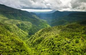 panorama-im-black-river-gorges-nationalpark-im-suedwesten-von-mauritius-der-fantastische-wanderwege-und-einen-der-seltensten-regenwaelder-der-welt-bietet